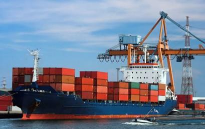 Kế toán xuất nhập khẩu cần làm gì