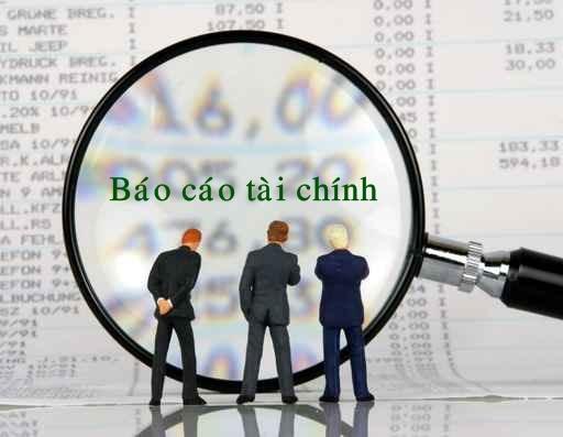 mẫu báo cáo tài chính