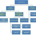 Quy trình xử lý hóa đơn GTGT lập sai