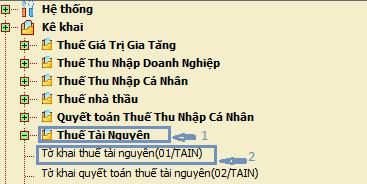 thue-tai-nguyen-2