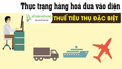 thue-tieu-thu-dac-biet-la-gi-thuc-trang-hang-hoa-dua-vao-dien-thue-ttdb